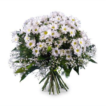 Ramo de Margaritas blancas - Envío de Flores a Domicilio