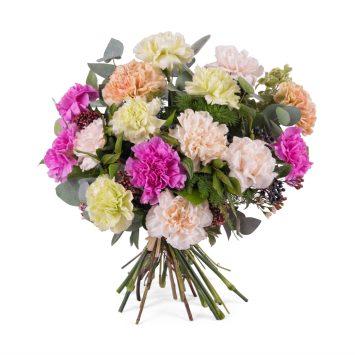 Ramo de claveles multicolor - Envío de Flores a Domicilio