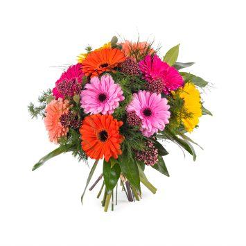 Ramo de Gerberas multicolor - Env?o de Flores a Domicilio