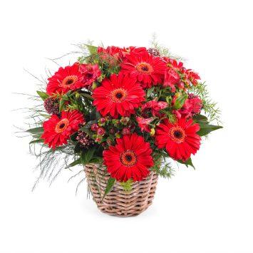 Arreglo en Cesta de Gerberas - Envío de Flores a Domicilio