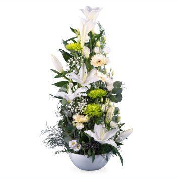 Centro Natalicio Vertical - Envío de Flores a Domicilio