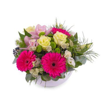 Centro de Gerberas Fucsia - Envío de Flores a Domicilio