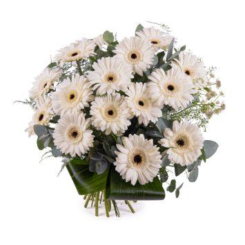Ramo de Gerberas Blancas - Envío de Flores a Domicilio