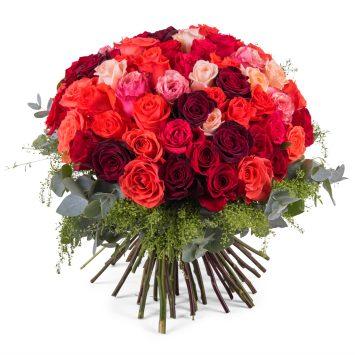 60 Rosas Multicolor de Tallo Corto - Envío de Flores a Domicilio
