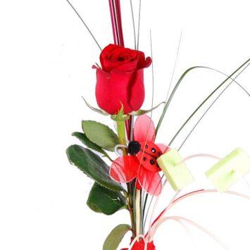 Rosa roja deluxe