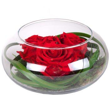 """Rosas de amor nenufar """"Rojas"""""""