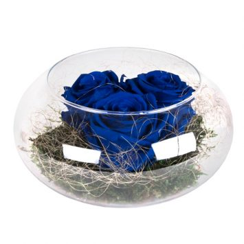 """Rosas de amor nenufar """"Azul"""""""